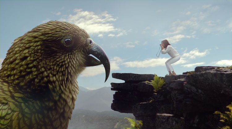 A scene from Air New Zealand's latest safety video. (Air New Zealand)