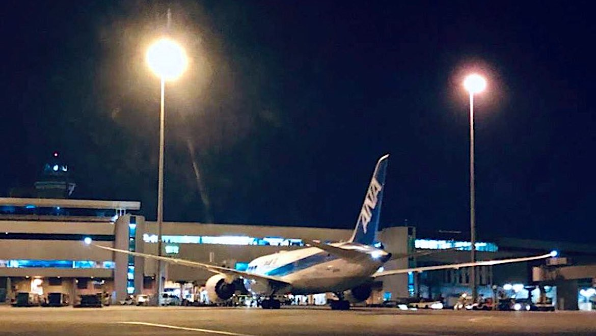 ANA Boeing 787-8 JA814A at Perth Airport. (Perth Airport/Twitter)