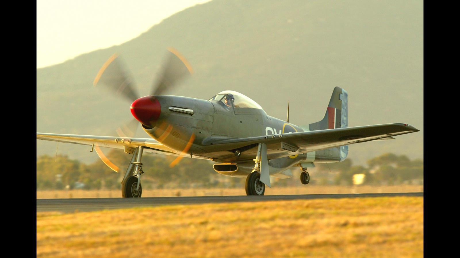 Mustang at Avalon SSP.jpg